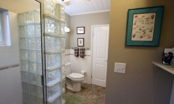 Bathroom with Glass Block Shower